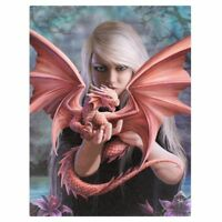 DRAGON & PRINCESS 'DRAGON KIN' CANVAS MYTHICAL PLAQUE BY ANNE STOKES WALL ART