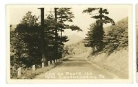 RPPC Roadside Route 120 nr SINNAMAHONING PA Potter County Real Photo Postcard