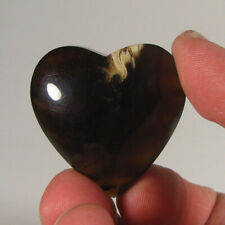 40mm Natural FOSSIL AMBER Heart Polished Palm Stone - Sumatra, Indonesia