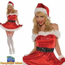 Amscan Christmas Fancy Dress & Period Costumes