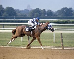 Secretariat (Ron Turcotte - Up) 1973 Belmonte Stakes - 8x10 Color Photo