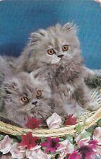 Art Deco/Vintage/Playing /Swap card Single Grey Kittens in a basket