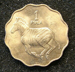 1976---- Botswana 1 Pula Coin----Unc.---KM8