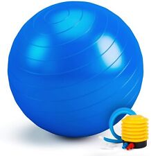 Exercise Ball 65CM Fitness Ball, Anti-Burst Stability Ball with Quick Pump, Prof