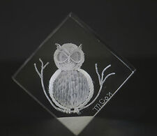 Vintage Owl Decor M. COX Reverse Carved Lucite Paperweight - Owl- Signed