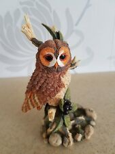 Royal Douulton Birds of Nature Collectable - Tawny Owl