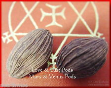 2 x LARGE LOVE LUST VENUS & MARS PODS Wicca Witch Pagan Goth Spell LOVE  CLARITY