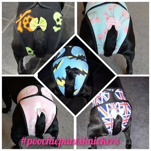 Handmade Hygiene Knickers / nappy /dog season pants dog panties  poochie pants