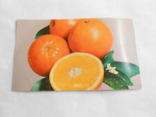 Cool Vintage Spyke's Grove Invitation to Drink Orange Juice Advertising Postcard