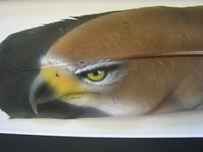 Red Tailed Hawk Eye - Russ Abbott Hand Painted Feather - COMMISSIONED