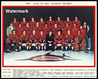 1972 - 73 Los Angeles Sharks Color Team Photo Picture 8 X 10 Photo Picture