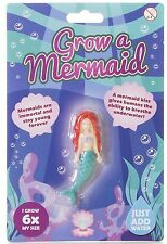 Grow A Mermaid Novelty Childrens Gift Brand New Novelty Gift Toy Just Add Water