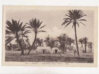 Zarsis Habitiations Dans Oasis Tunisia Vintage Postcard 313b