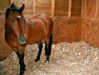 Animal Bedding Chipped Cardboard Eco friendly Bio Degradable Horse Hamster 20kg