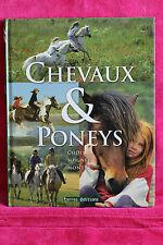 Chevaux et Poneys - Carolyn Henderson