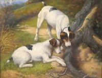19th Century English Fox Terriers Dog Portrait At A Rabbit Hole by Alfred WENT