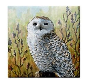 Large Ceramic Tile 6x6 Bird 65 Owl Printed in USA art painting L.Dumas