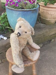 Antique Rare Early Long Limbs Mohair Jointed Teddy Bear Possibly Struntz?