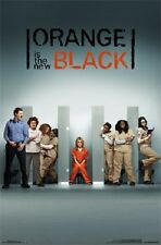 2014 LIONS GATE NETFLIX ORANGE IS THE NEW BLACK ONE SHEET POSTER NEW 22x34