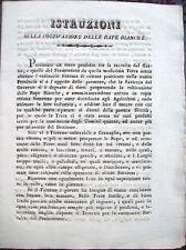 1830 COLTIVAZIONE DELLE RAPE BIANCHE AGRICOLTURA RARO