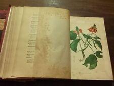 1891 Enciclopedia Farmaceutica Diccionario General de Farmacia 4Tomos 50 Láminas