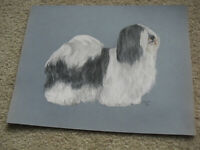 Original Vintage 1970 PDP Signed Pastel Shih Tzu Dog Painting