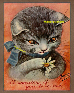IF YOU LOVE ME kitten with daisy 8x10 vintage Postcard cat art print