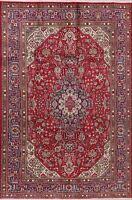 6x10 Geometric Oriental Area Rug Hand-Knotted Wool Decorative Traditional Carpet