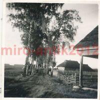3 x Foto, Flug Ausbildung Regt. 53, Umgebung von Dno, Russland (N)1187