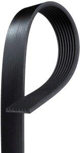 Serpentine Belt-Standard ACDelco Pro 8K1223