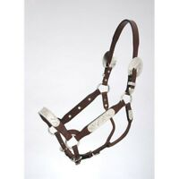 Tough-1 Royal King Congress Show Halter with Lead Berry Edge Silver Trim