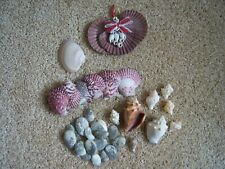Collection or shells, various sizes, types and a shell ornament