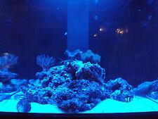 """72"""" Moon Light Moonlight Shimmer 30 LED Fish Aquarium Reef Fresh Power Supply"""