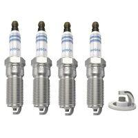 Spark Plugs x 4 Bosch Fits Ford Focus 1.4 1.6 1.8 2.0 16v DAW, DBW , DNW , DFW