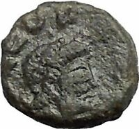 LEO I 457AD Rare Authentic Ancient Genuine Roman Coin Lion seated  i54901
