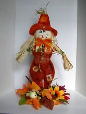 HALLOWEEN AUTUMN SCARECROW, THANKSGIVING CUTE COLORFUL