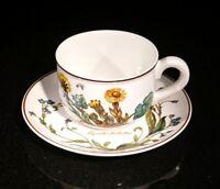 Beautiful Villeroy Boch Botanica Teacup And Saucer