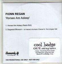 (CS941) Fionn Regan, Horses are Asleep - 2012 DJ CD