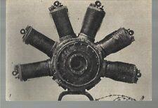 COLLE SANT ELIA  VECCHIO CIMITERO DEGLI EROI CADUTI IN GUERRA 1915 18