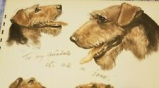 AIREDALE TERRIER Dog DIANA THORNE Animal Artist Vintage Print