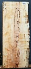 Figured Black line Spalted Maple Wood 12457 Instrument Lumber 24x 10x 2.75