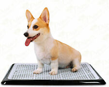 """Pet Awesome Dog Potty Tray / Puppy Pee Pad Holder 25""""X20"""" Indoor Potty Train"""
