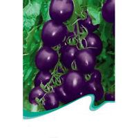 1X(1 Bolsa 20 Semillas de tomate Vegetales Alimentos naturales I3U3) 7Y