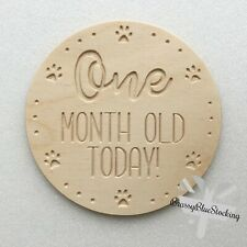 **PETS** Carved Wooden Craft Shape - Puppy/Kitten Age Milestones Plaque.