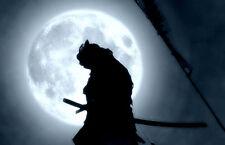 Framed Print - Samurai Ninja with Sword Kneeling to the Moon (Picture Poster Art