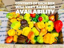 Fresh Picked Organically grown HOT Peppers Assorted Varieties FREE SHIPPING