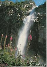 BF25422 cascade et lys martagon pour un coin de vacanc   france front/back image