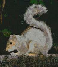 "Grey Squirrel Counted Cross Stitch Kit 8"" x 9.25"" 20.3cm x 23.6cm A2214"