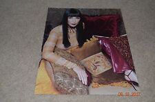Cher Photo (With Pillows)