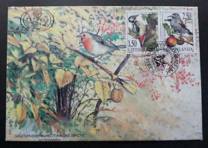 Yugoslavia Protected Animal Species - Wild Birds 1997 Woodpecker (stamp FDC)